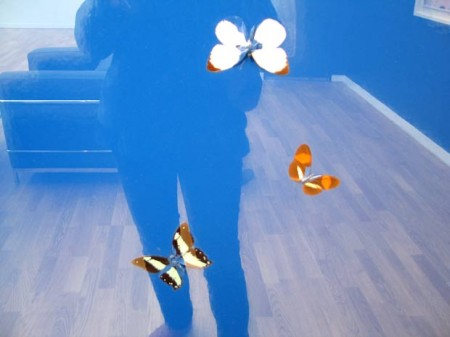 reflection dans un Damien Hirst